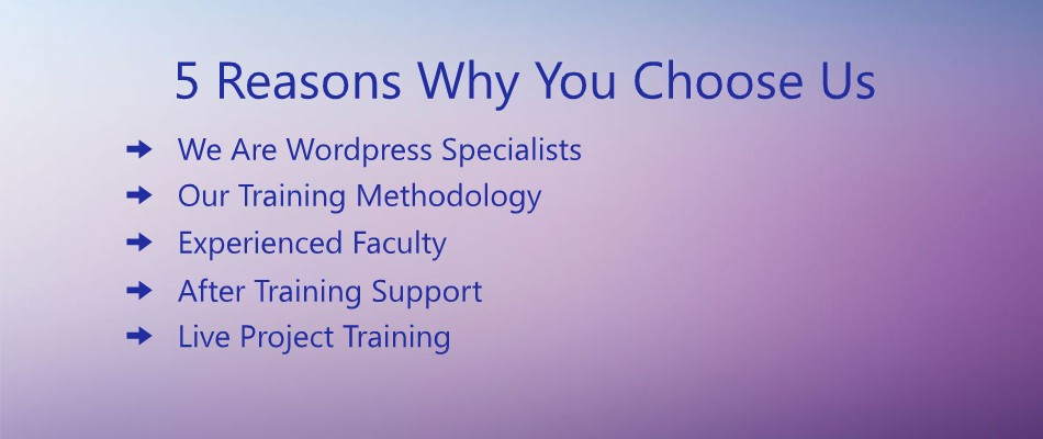 5-reasons-why-you-choose-us