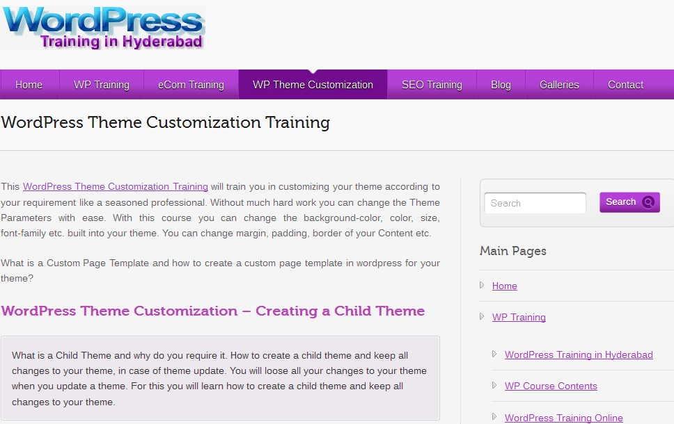 wordpress-theme-customization-training